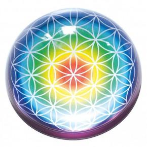 Hémisphère en verre - Fleur...